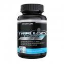 Viên uống Tribuloid hỗ trợ tăng cơ dành cho nam giới
